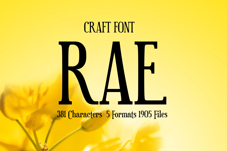 Rae Elegant Thin Serif Font